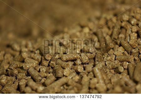 Solid wooden pellets, closeup