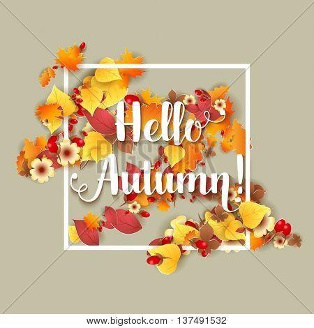 Hello Autumn Background. Bright autumn birch, oak, maple, chestnut leaves and berry with flowers light background. Square frame. Vector illustration