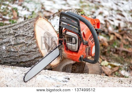 Gasoline Powered Chainsaw With Tools And Chopped Trees Against L