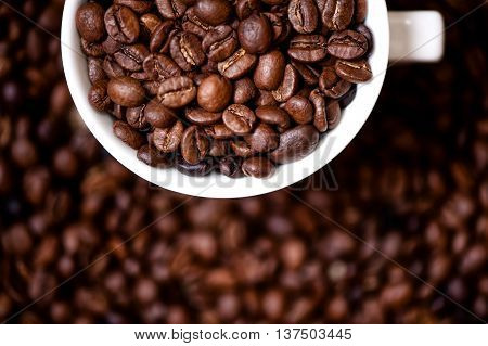 Detail Of Coffee Mug With Fresh, Bio Coffee Beans