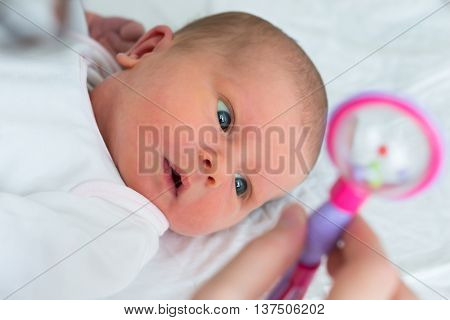 Close-up Of A Baby Looking At Rattle Hold By Her Mother
