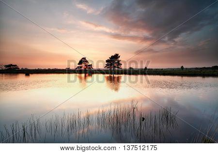 sunset light on wild lake Dwingelderveld Netherlands
