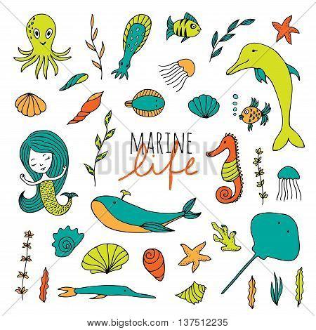 Vector set of marine life. Fish, mermaid, sea animals hand drawn in Doodle style.