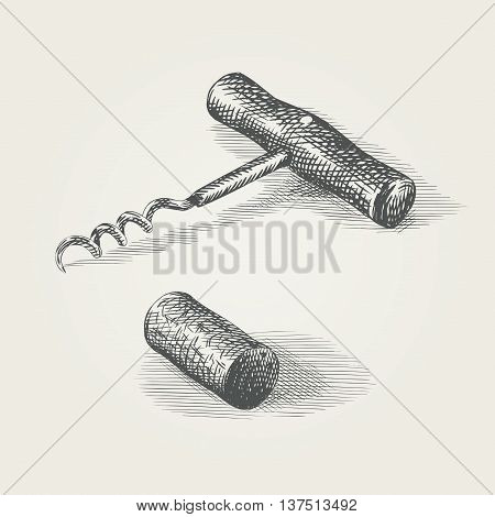 Hand drawn corkscrew and wine cork. Illustration of a kitchen tool