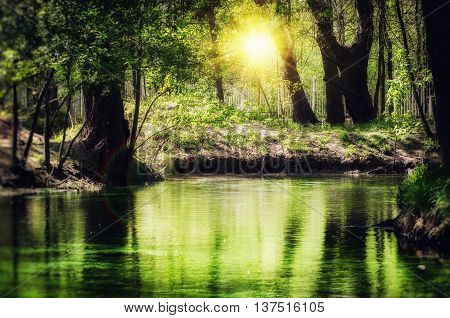Magic Emerald River In Sunny Green Forest