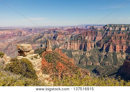 the scenic landscape of the grand canyon north rim