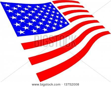 USA flag isolated on white