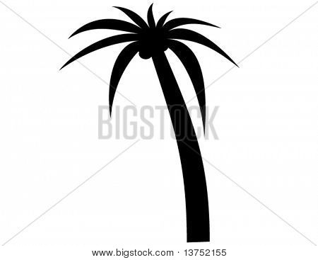 Palm silhouette in vector format. Will size anywhere to any pixels without losing quality