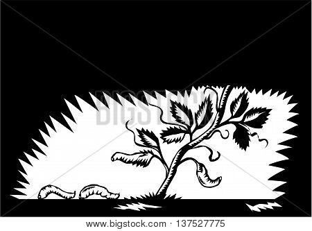 Illustration of a vine plant leaves morphing into maggots set on isolated background done in retro woodcut style.