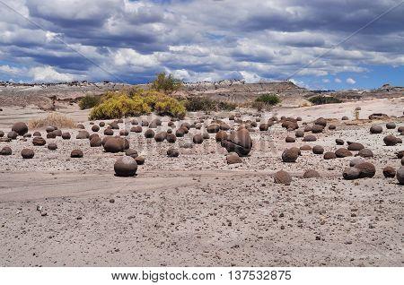 Cancha De Bochas. Ischigualasto Provincial Park. Argentina