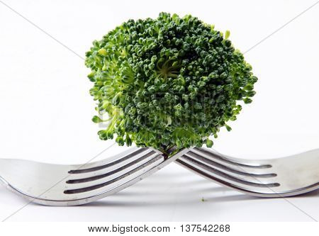 A broccoli floret on two forks on a white background.