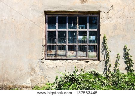 Window In Old Shabby Building
