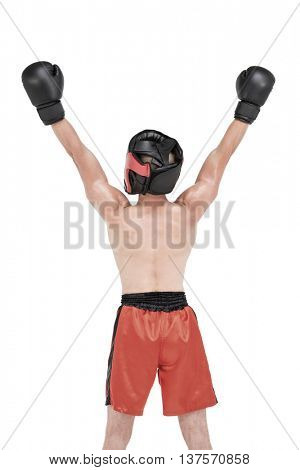 Boxer posing after victory on white background