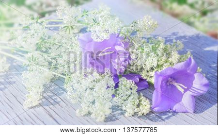 Nice garden bells bouquet with white wildflowers ay sunny summer day
