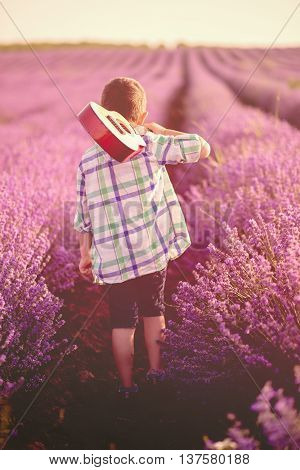 Little boy carrying a guitar on his shoulder walking through a lavender field under the sunrise rays