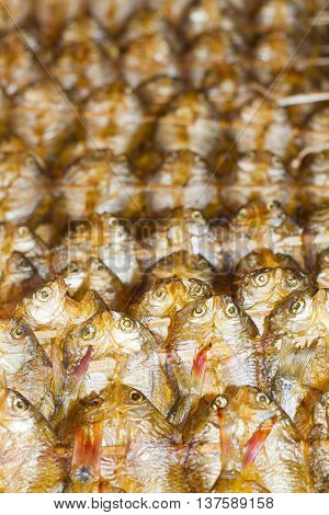 Fish products on display the largest wholesale fish market. Vang Vieng Laos