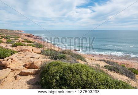 Elevated views at Red Bluff beach with a turquoise Indian Ocean seascape,native plants and red sandstone coast line under a blue sky with clouds in Kalbarri, Western Australia.