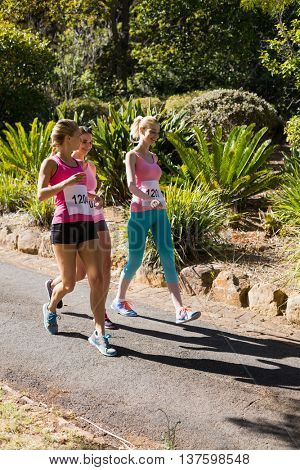 Young athlete women walking in park