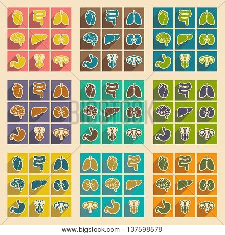 Icons of assembly internal organs in flat style