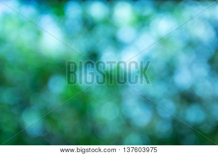 Blurred Green Lights Circular Bokeh Abstract For Christmas Background