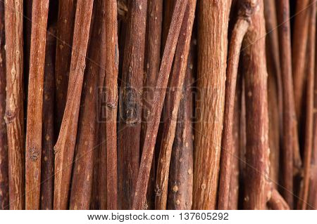 A macro shot of tree branches (brushwood) as a background