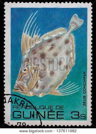 KRIVOY ROG, UKRAINE - JUNE 05, 2016: A stamp printed in Republic of Guinea shows fish, circa 1980