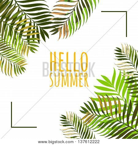 Vector Frame With Coconut Palm Leaves On White Background. Hello Summer Background. Floral Banner Or