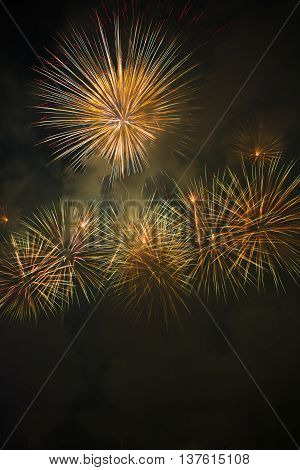 Colorful fireworks over dark sky,Fireworks light up the sky with dazzling display