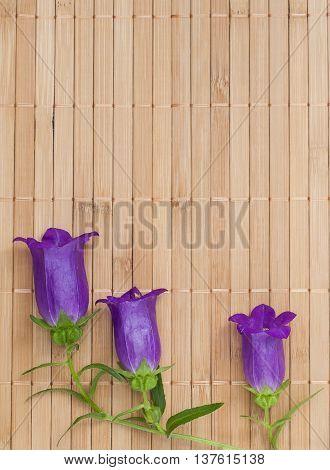 Branch Of Ultramarine Colored Bellflowers On Beige Bamboo Napkin