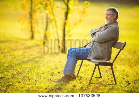Portrait of a senior man outdoors, sitting on a bench in a park (shallow DOF; color toned image)