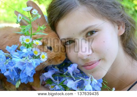 A young girl with a small red rabbit breed in New Zealand and a bouquet of blue delphinium close