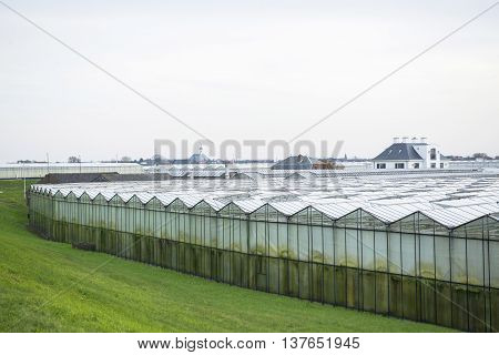 Greenhouses and a Church in the background in 'het Westland' the Netherlands