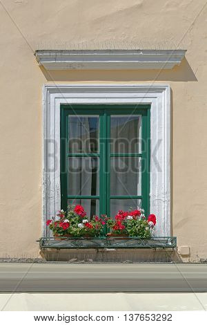 Closed Green Window With Flowers in Pots