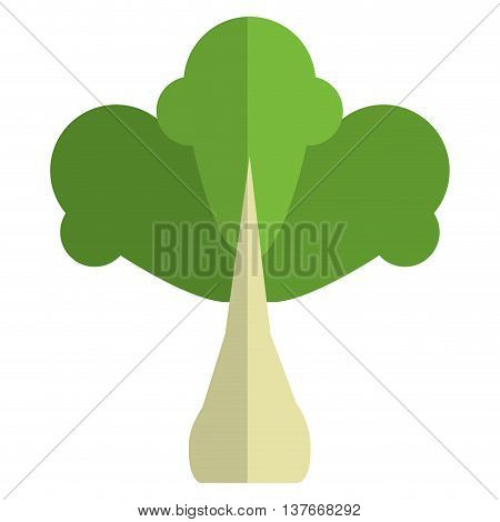 simple flat design whole turnip with leaves icon vector illustration