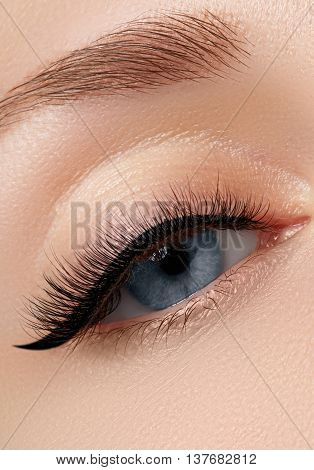Elegance Close-up Of Beautiful Female Eye With Fashion Eyeshadow