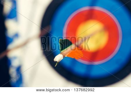 Modern Arrow Hit Target