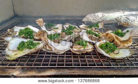 Fresh Grilled Oyster on a hot Barbecue Grill