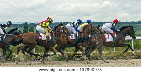 Horse race for the prize Jockey Cluba in Pyatigorsk,Caucasus,Russia.