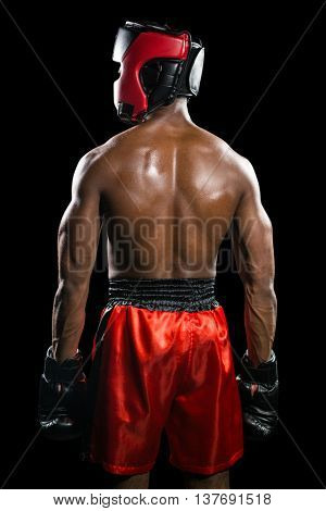 Rear view of boxer standing on black background