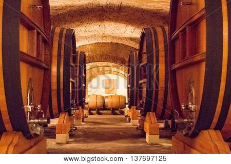 Winery Cellar In France With Huge Barrels.