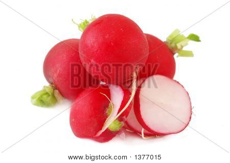Little Radishes