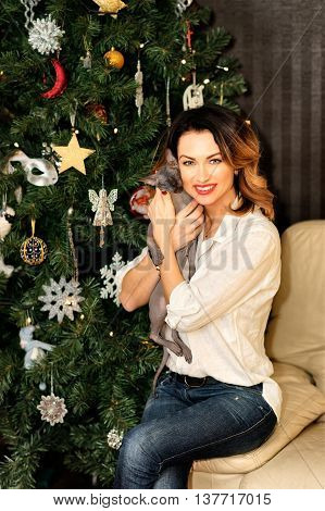 Beautiful Woman Sitting On The Sofa Near Christmas Tree