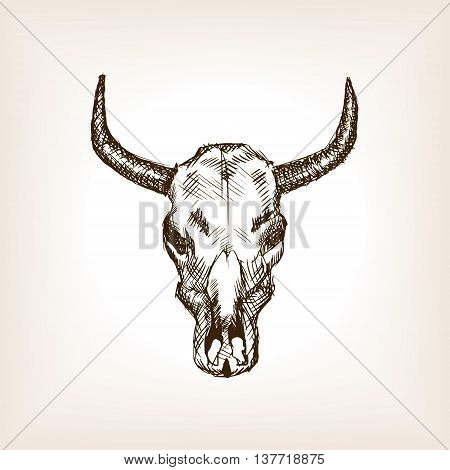Cow skull sketch style vector illustration. Old engraving imitation.