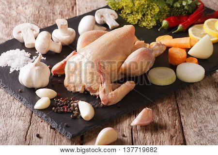 Homemade Raw Chicken With Vegetables And Spices. Horizontal