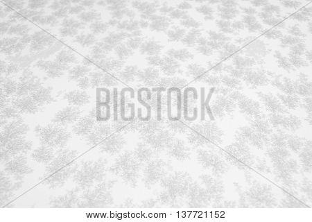 Closeup of large snow or ice crystals