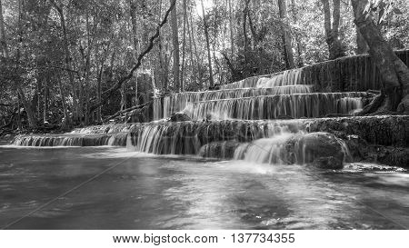 Black and White, deep forest waterfalls in natural landscape background