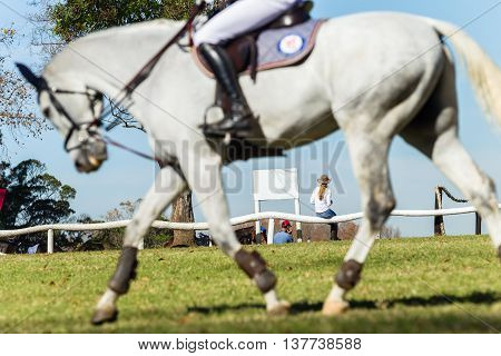 Rider gray horse warms up field equestrian show jumping with woman seated watching competition.