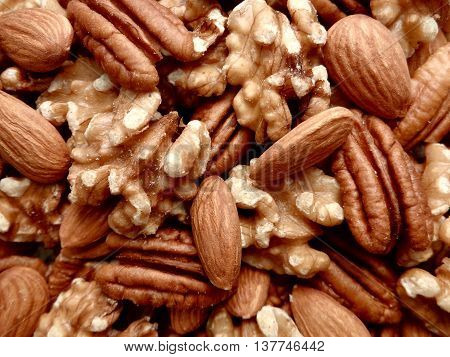 Pile of mixed nuts (almonds, pecans, and walnuts) close up