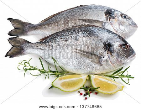Two fresh dorada fishes with spices isolated over the white background.