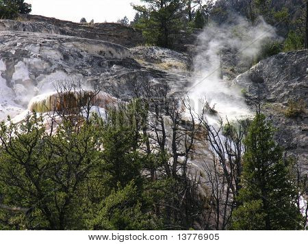 Springs of Yellowstone